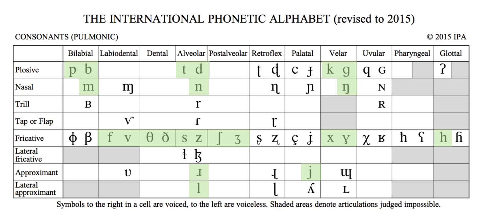American English IPA Chart consonants