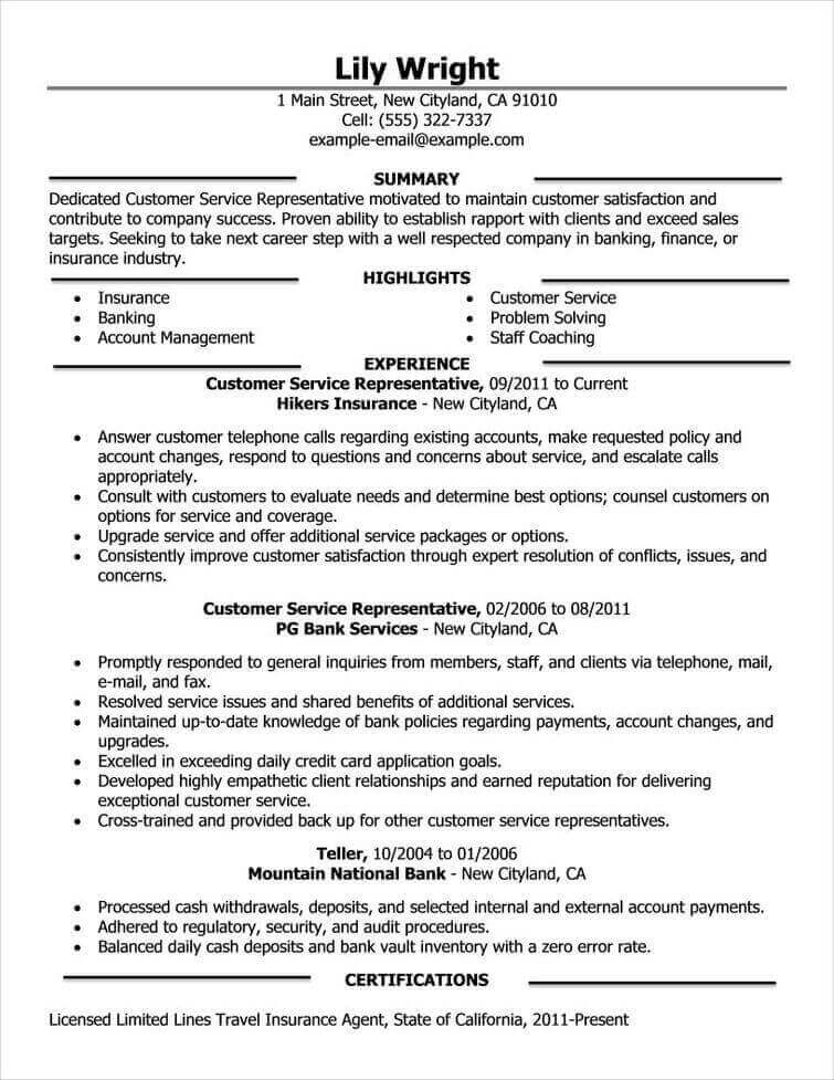 Examples Examples Of Good Resumes Simple Resume Summary Examples