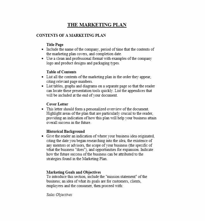 30 Professional Marketing Plan Templates Template Lab for