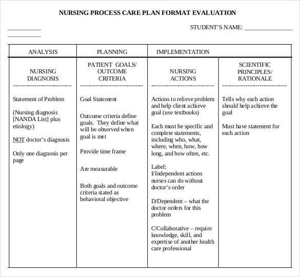 sample care plan template Roho.4senses.co