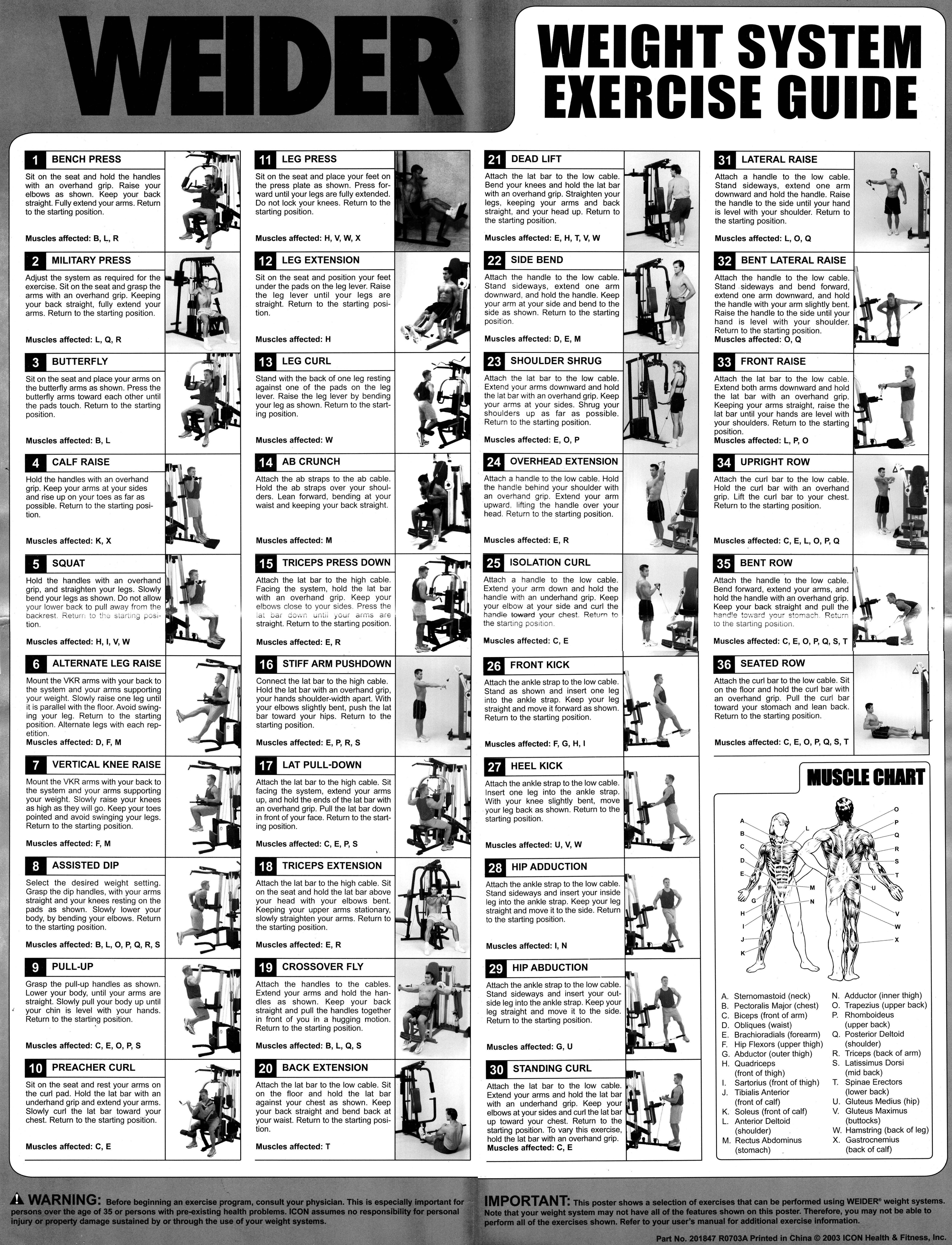 Weider Pro 6900 Exercise Chart | Exercise chart, Exercises and Chart
