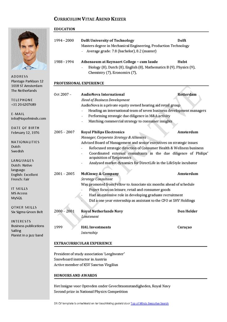 Free CV Template Curriculum Vitae Template and CV Example